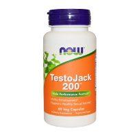 testo-jack-2000-60c-now