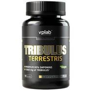 tribulus_terrestris_187